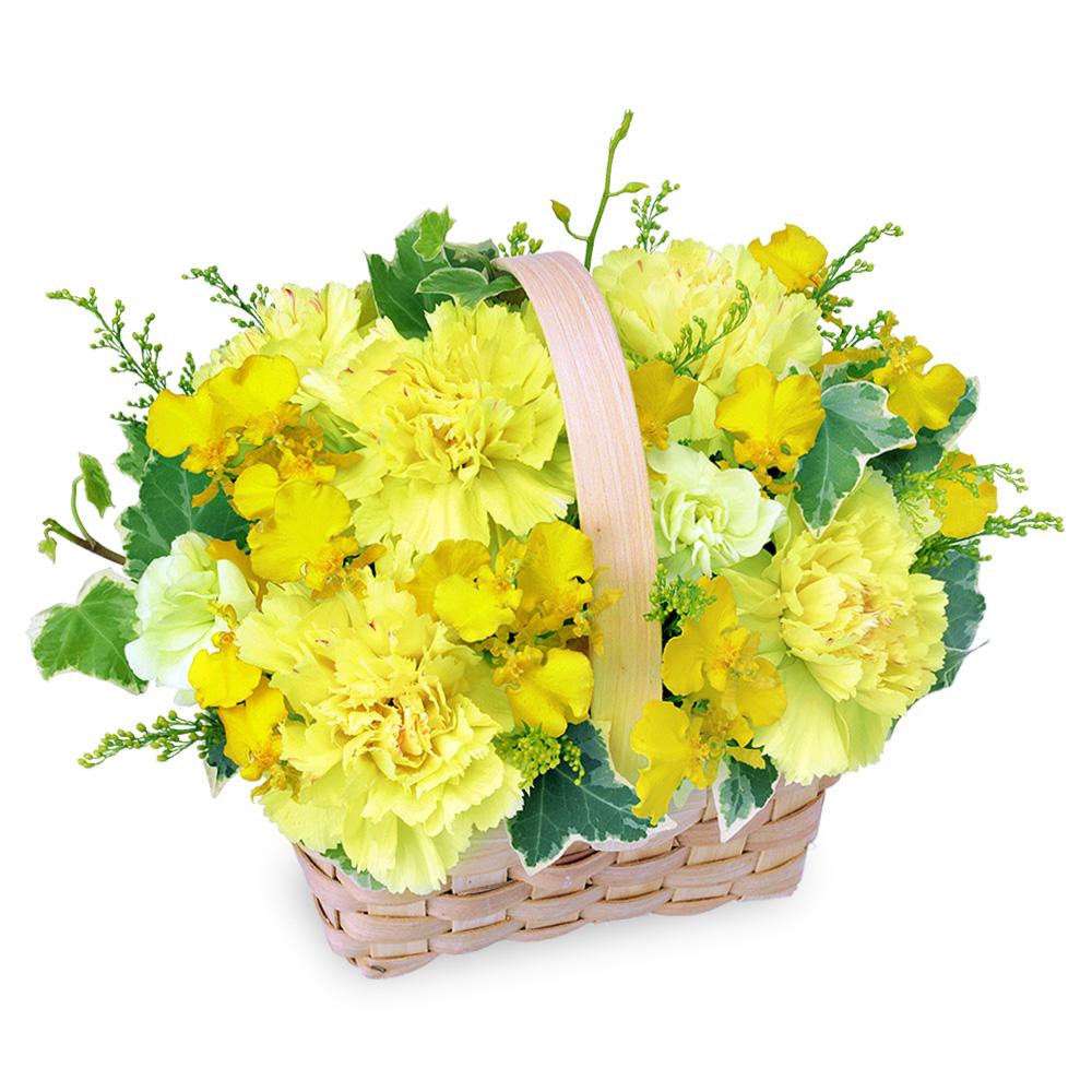 【誕生日フラワーギフト】黄色のウッドバスケット