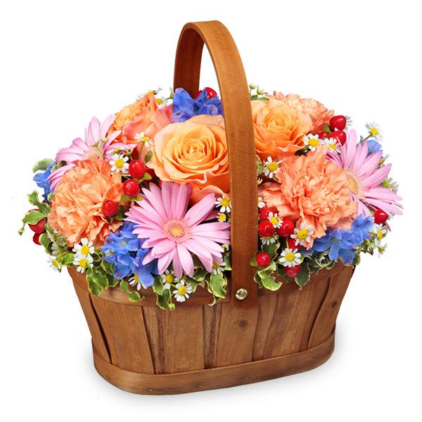 【10月の誕生花(オレンジバラ)】オレンジ&ピンク&ブルーのハーモニーバスケット