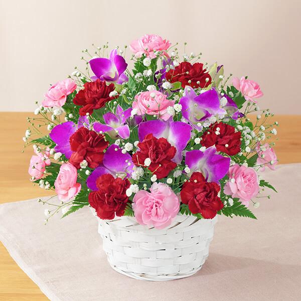 【母の日】カーネーションと赤リボンのバスケット 521282 |花キューピットの2019母の日プレゼント特集