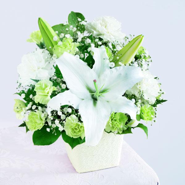 【母の日】フォーエバーママ 521286 |花キューピットの2019母の日プレゼント特集