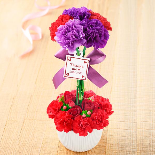 【母の日】ムーンダストのトピアリーアレンジ 521302 |花キューピットの2019母の日プレゼント特集