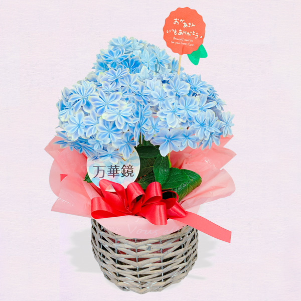 【母の日】【地域限定】優しい水色あじさい「万華鏡」 521313 |花キューピットの母の日プレゼント特集2020