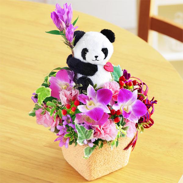 【敬老の日】リンドウのマスコット付きアレンジメント(パンダ) 522085 |花キューピットの2019敬老の日プレゼント特集