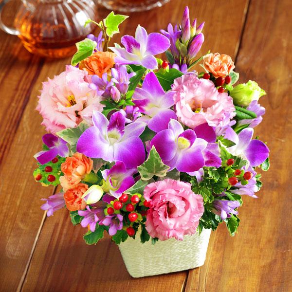 【敬老の日】リンドウとデンファレのアレンジメント 522086 |花キューピットの2019敬老の日プレゼント特集