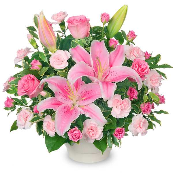 【誕生日フラワーギフト】ピンクユリのコンポート