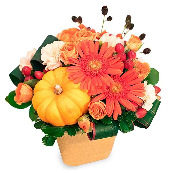 【秋の花贈り】ハロウィンアレンジメント 613229 |花キューピットの2019秋のお祝いプレゼント特集