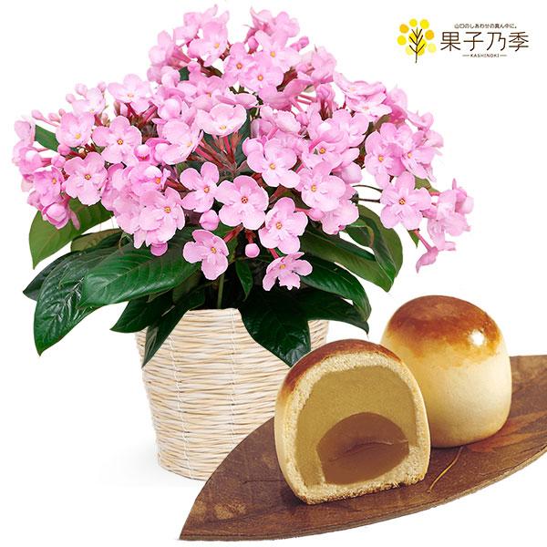 【敬老の日】敬老の日限定「におい桜」(ココ)と栗ほまれ 4個入り 711420 |花キューピットの敬老の日プレゼント特集2020