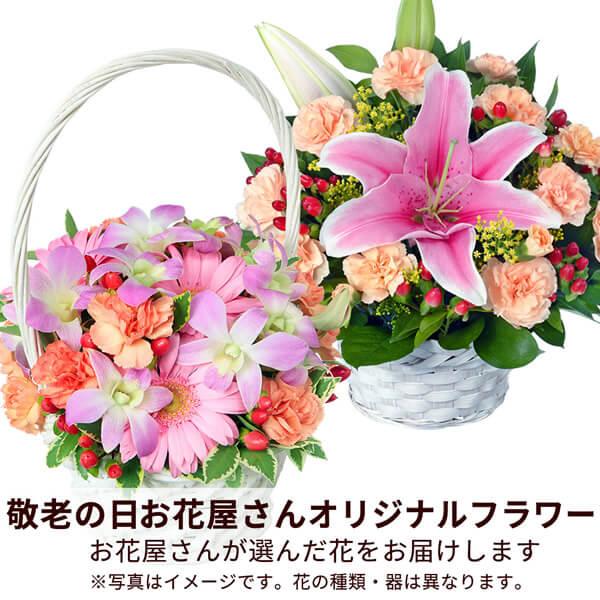 お花屋さんおすすめフラワー|母の日プレゼント特集2019