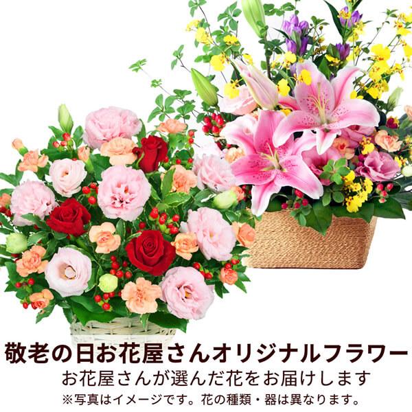 【おすすめ】アレンジ mmap008 |花キューピットの敬老の日プレゼント特集2019
