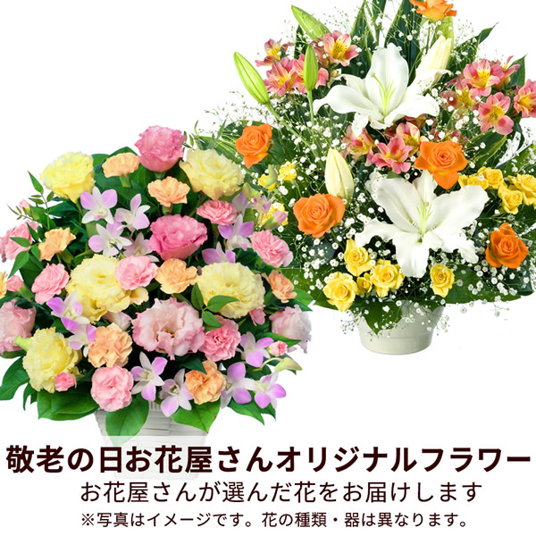 【おすすめ】アレンジ mmap010 |花キューピットの敬老の日プレゼント特集2019