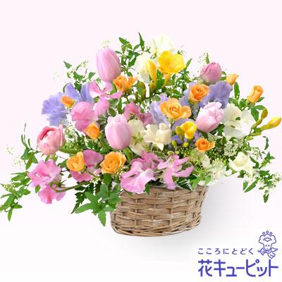 【1月の誕生花(スイートピー等)】カラフルなアレンジメント優しい色合いで春の贈り物にぴったりのアレンジメントです。