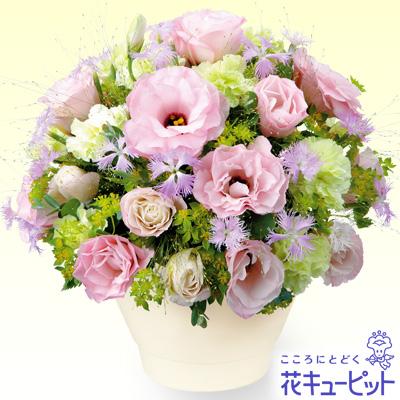 【お祝い】トルコキキョウのアレンジメント可憐な花びらが、優しく涼しげな印象のアレンジメント。