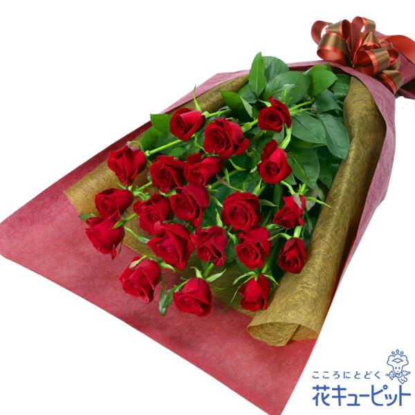 【お祝い】赤バラの花束情熱的な真っ赤なバラをシックにラッピング。