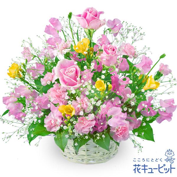 【お祝い】春のミックスバスケット春爛漫カラフルアレンジメント!