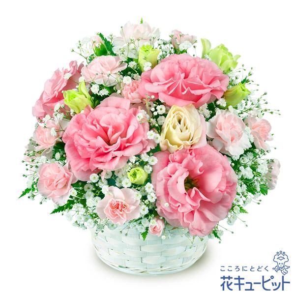 【誕生日フラワーギフト】トルコキキョウのアレンジメント可愛らしいトルコキキョウのアレンジメント!