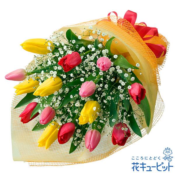 【お祝い】チューリップのミックス花束ボリュームも満点!愛ある贈り物にぴったりなチューリップ!
