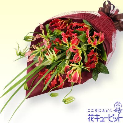 【誕生日フラワーギフト】グロリオサの花束おしゃれで豪華!ボリューム満点のグロリオサの花束♪