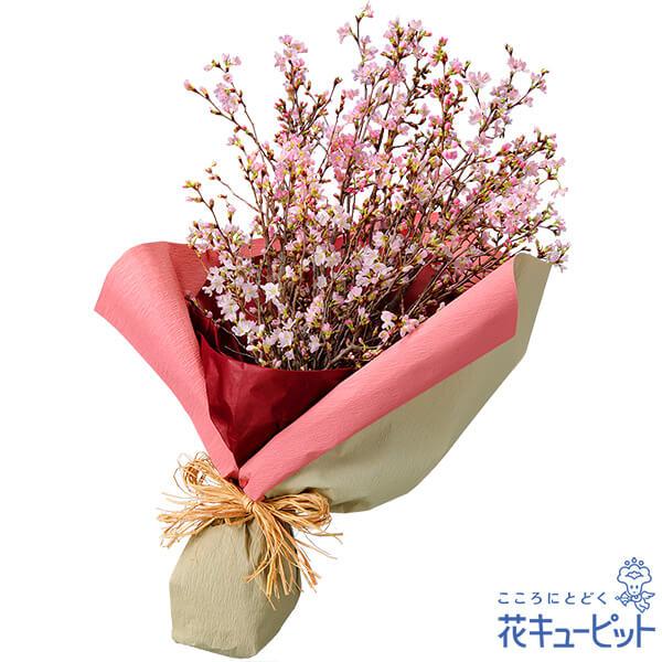 【春のお誕生日】さくらの花束春といえばやっぱり欠かせない『さくら』!