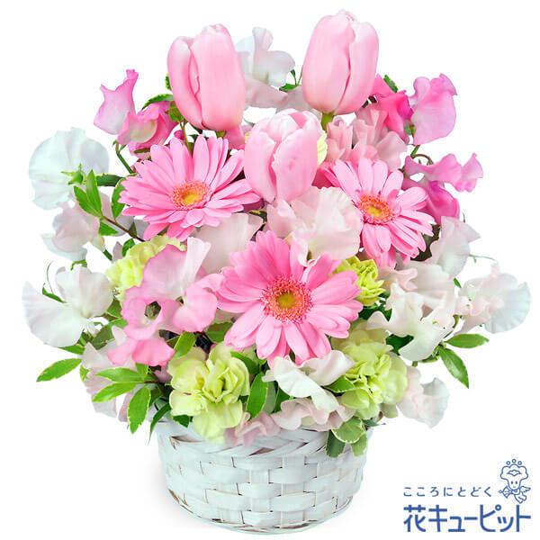 【3月の誕生花(ピンクガーベラ等)】春のピンクアレンジメント(ピンク)ピンク色のお花でまとめた春のアレンジメント!