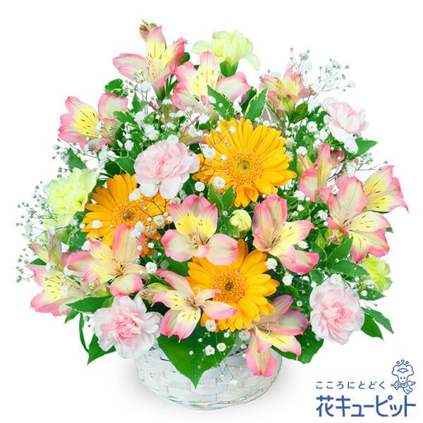 【お祝い】アルストロメリアのアレンジメント元気な色合いのアレンジメント!