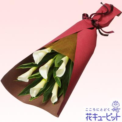 【お祝い】カラーの花束大人の女性にもぴったり!シンプルなカラーの花束。