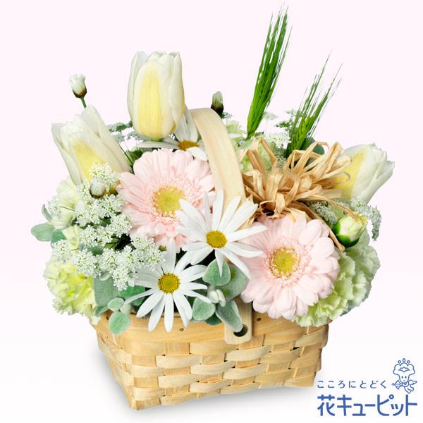 【お祝い】春のガーデンバスケット春のお花を、淡いパステルカラーで可愛らしくまとめました♪