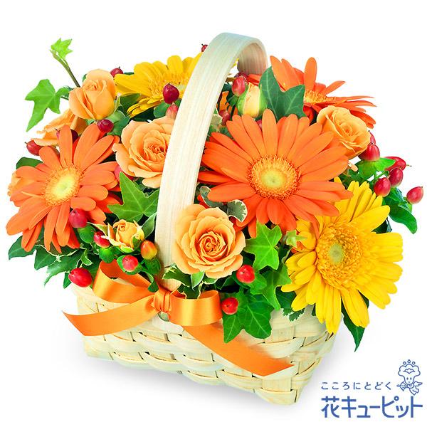 【お誕生日祝い(法人)】オレンジ&イエローのアレンジメント