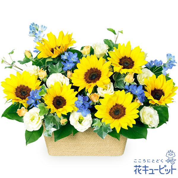 【父の日 ランキング】ひまわりのアレンジメント初夏を感じさせる爽やかアレンジメント!