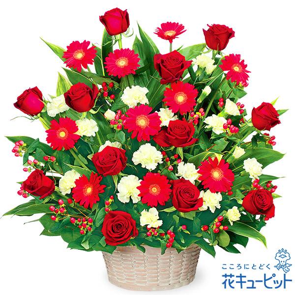 【お祝い】赤色のアレンジメント赤色のバラとガーベラの、シックでボリュームあるアレンジメント