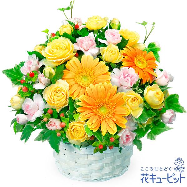 【お祝い】オレンジガーベラのアレンジメント見る人の心を元気にしてくれるアレンジメント!