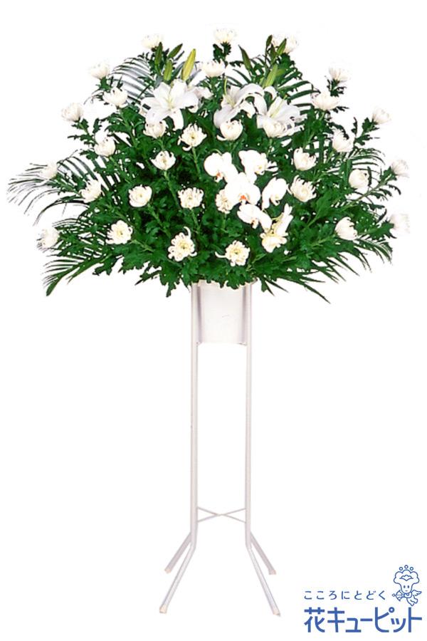 【スタンド花・花輪・当日配達(葬儀・葬式の供花)(法人)】お供え用スタンド1段(白あがり)