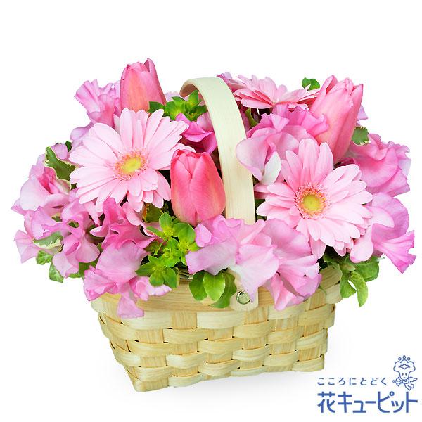【お祝い】チューリップとガーベラのバスケットアレンジメント可愛いピンクのアレンジメントはギフトにおすすめ!