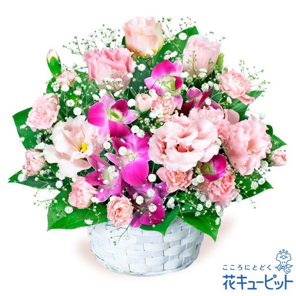 【ご結婚記念日(法人)】トルコキキョウとデンファレのアレンジメント