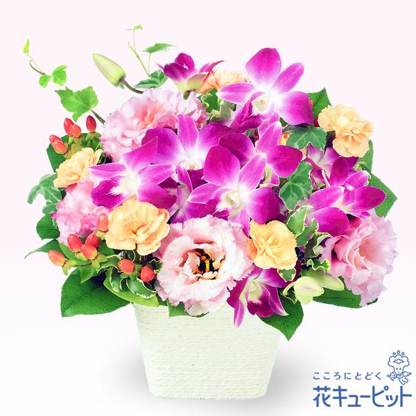 【誕生日フラワーギフト】デンファレとトルコキキョウのアレンジメントデンファレを使用したミックス色の華やかなアレンジメント