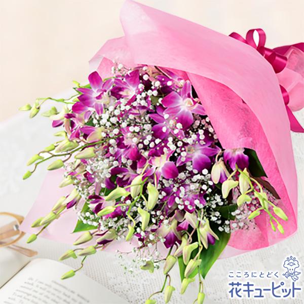 【9月の誕生花(デンファレ等)】ピンクデンファレの花束