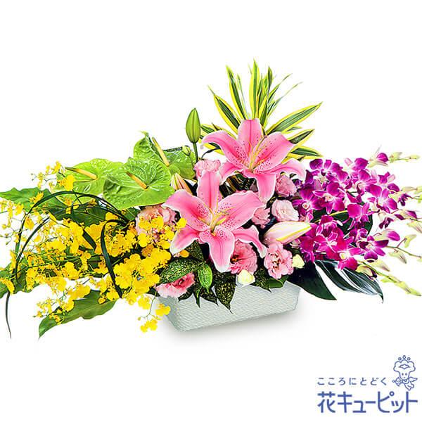 【6月の誕生花(ユリ等)】ユリとデンファレのアレンジメントユリとデンファレが華やかな高級感あふれるアレンジメントです