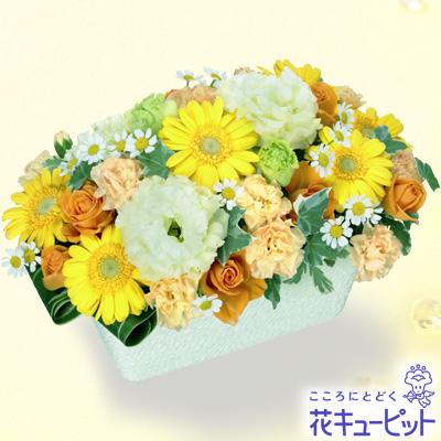 【誕生日フラワーギフト】イエローガーベラのアレンジメントビタミンカラーのお花が賑やかなアレンジメント