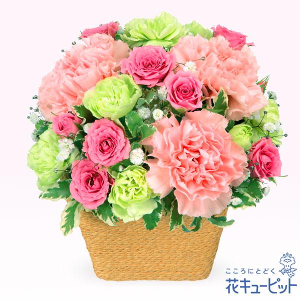 【お祝い】ピンクアレンジメントやわらかく可憐なピンクアレンジメント
