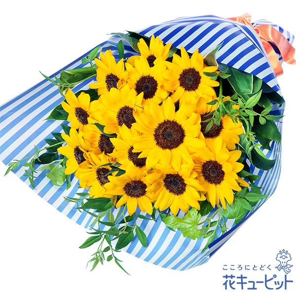 【ひまわり特集】ひまわりの花束(ストライプ)さわやかな風を届けるひまわりの花束