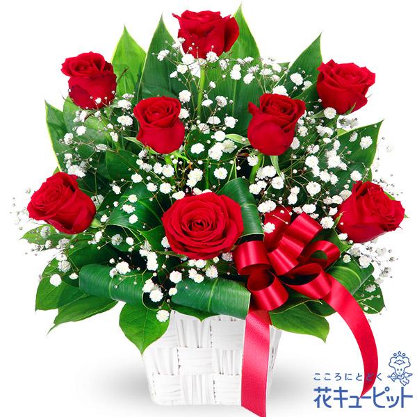 【誕生日フラワーギフト】赤バラのリボンアレンジメント人気の赤バラに上品なリボンがアクセント