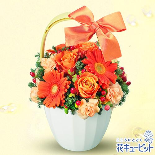 【お祝い】オレンジガーベラとバラのアレンジメント男女問わず贈れる人気のオレンジ系アレンジメント
