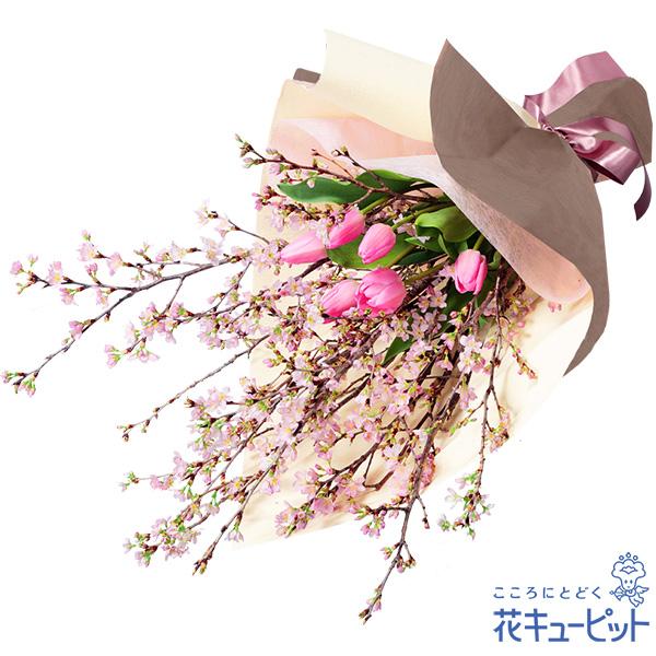 【誕生花 2月(チューリップ等)(法人)】さくらの花とチューリップの花束