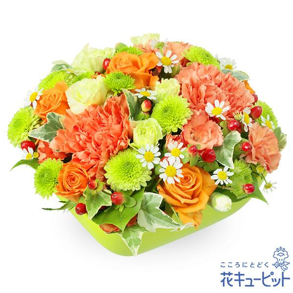 【お祝い】オレンジバラとカーネーションのアレンジメント鮮やかなオレンジの花をぎゅっとアレンジ