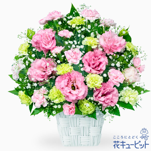 【お誕生日祝い(法人)】トルコキキョウのピンクアレンジメント