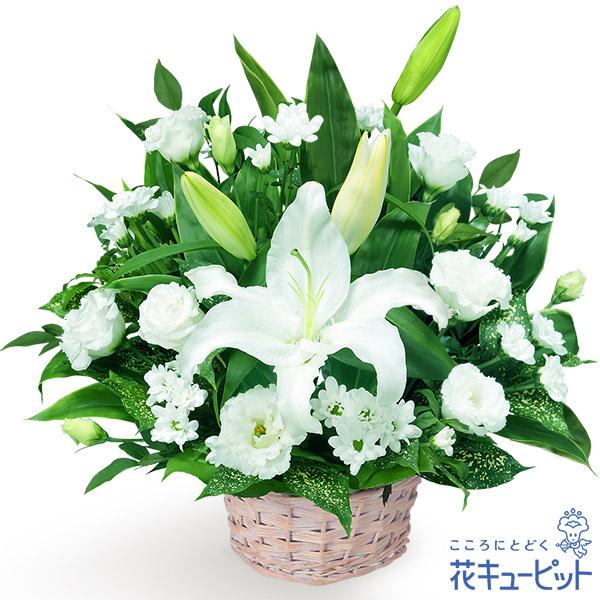 【お供え・お悔やみの献花】お供えのアレンジメント哀悼の花として最適なアレンジメント
