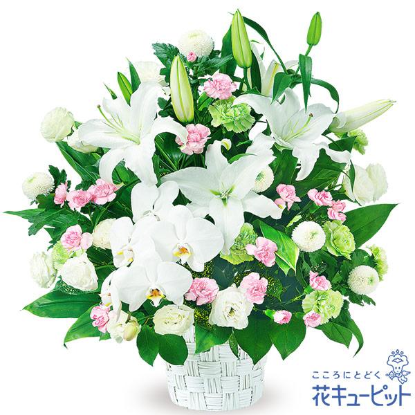 【お供え・お悔やみの献花】お供えのアレンジメント格調高い白いユリと胡蝶蘭のやわらかい色合いのアレンジメント