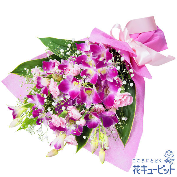 【お祝い】デンファレの花束甘く上品な色合いで大人の女性にぴったり