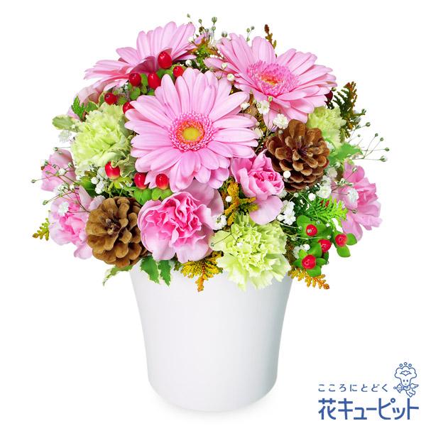 【お祝い】ピンクガーベラのウィンターアレンジメント幅広い年代の方に喜ばれるアレンジメント