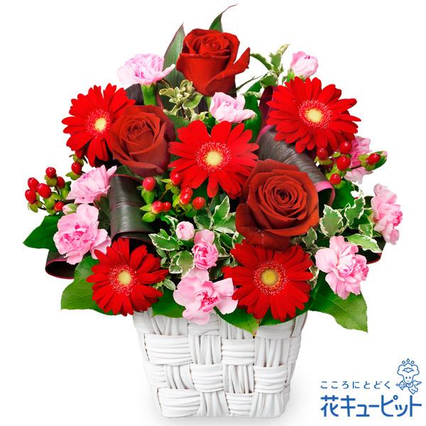 【お祝い】赤バラと赤ガーベラのスクエアバスケット秋冬にぴったりな深い色合い