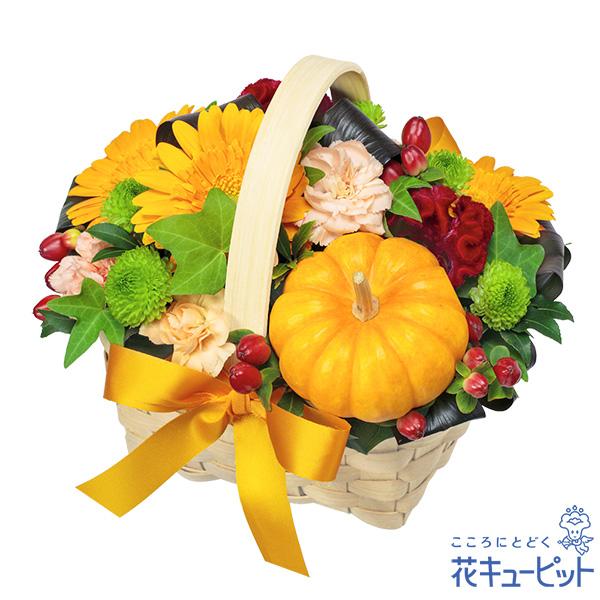 【秋のお祝い】ハロウィンのオレンジバスケットハロウィンにぴったりのポップなバスケット